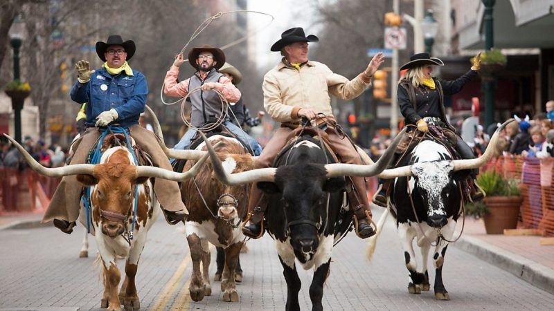 EVERYTHING YOU NEED TO KNOW ABOUT SAN ANTONIO STOCK SHOW AND RODEO 2020